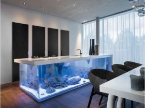 akvarium1