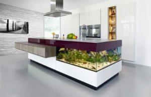 akvaarium5